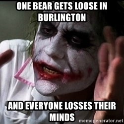 Joker mind lost - one bear gets loose in burlington and everyone losses their minds