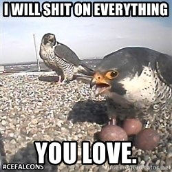 #CEFalcons - i will shit on everything you love.