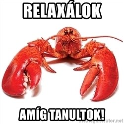 Unable to Relax and Have Fun Lobster - relaxálok  amíg tanultok!