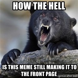 Insane Confession Bear - how the hell  is this meme still making it to the front page