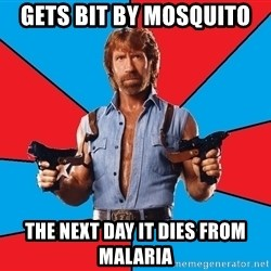 Chuck Norris  - Gets bit by mosquito the next day it dies from malaria