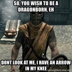 skyrim whiterun guard - so, you wish to be a dragonborn, eh dont look at me, i have an arrow in my knee