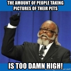 Too damn high - the amount of people taking pictures of their pets is too damn high!