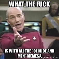 """Picard Wtf - what the fuck is with all the """"of mice and men"""" memes?"""