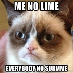 Angry Cat Meme - me no lime everybody no survive