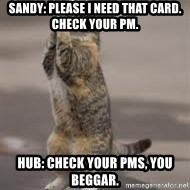 Begging Cat - SANDY: please i need that card.  Check YOUR PM. HUB: check your pms, you beggar.