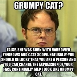 False guy - grumpy cat? false. she was born with narrowed eyebrows and cats scowl naturally. you should be lucky that you are a person and you can change the expression of your face continually. Me? I look like grumpy cat.