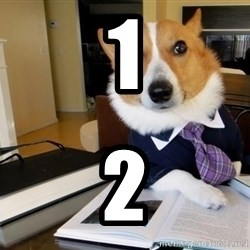 Dog Lawyer - 1 2