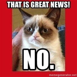 No cat - that is great news! no.