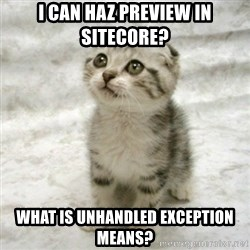 Can haz cat - I can haz preview in sitecore? what is unhandled exception means?