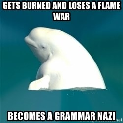 Butthurt Beluga - gets burned and loses a flame war becomes a grammar nazi