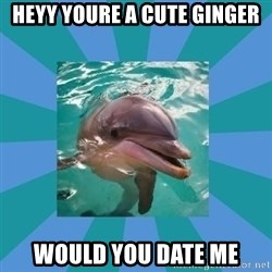 Dyscalculic Dolphin - heyy youre a cute ginger would you date me