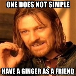One Does Not Simply - ONE DOES NOT SIMPLE  HAVE A GINGER AS A FRIEND