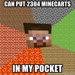 Minecraft Steve - CAN PUT 2304 MINECARTS IN MY POCKET