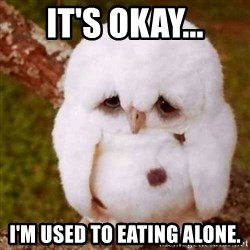 Depressed Owl - It's okay... I'm used to eating alone.