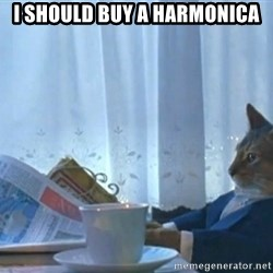 Boat cat meme - I should buy a harmonica