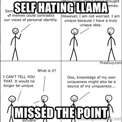 Memes - Self hating LLAMA missed the point