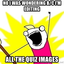 X ALL THE THINGS - no I was wondering b/c I'm editing all the quiz images