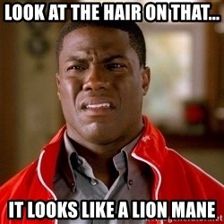 Kevin hart too - Look at the hair on that... It looks like a lion mane