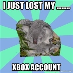 Clinically Depressed Koala - i just lost my ........  xbox account