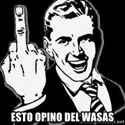 fuck you guy -   esto opino del wasas