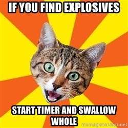 Bad Advice Cat - if you find explosives start timer and swallow whole