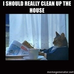 i should buy a boat cat - I should really clean up the house