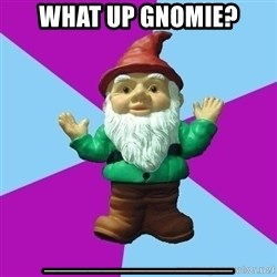Guard Gnome - What up Gnomie? _____________