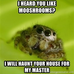 The Spider Bro - I heard you like mooshrooms? I will haunt your house for my master