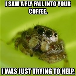 The Spider Bro - I saw a fly fall into your coffee. I was just trying to help.