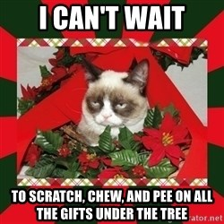 GRUMPY CAT ON CHRISTMAS - I can't wait to scratch, chew, and pee on all the gifts under the tree