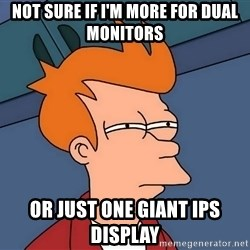 Futurama Fry - not sure if I'm more for dual monitors or just one giant ips display