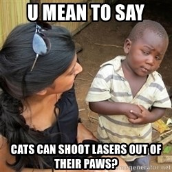 So You're Telling me - U mean to say cats can shoot lasers out of their paws?