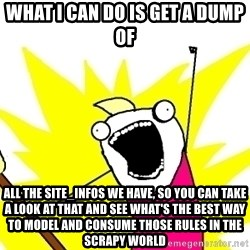 X ALL THE THINGS - What I can do is get a dump of all the site_infos we have, so you can take a look at that and see what's the best way to model and consume those rules in the scrapy world