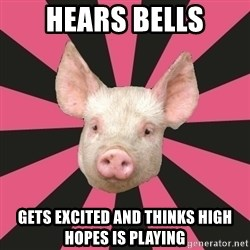 Pink Floyd Fan Pig - hears bells gets excited and thinks high hopes is playing