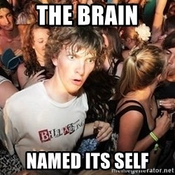 Sudden Realization Ralph - the brain named its self