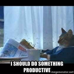 Thinking Cat -  I should do something PRODUCTIVE