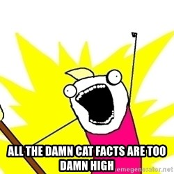 X ALL THE THINGS -  all the damn cat facts are too damn high