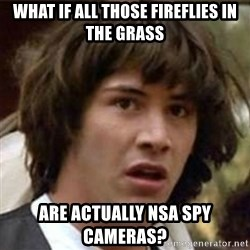 what if meme - what if all those fireflies in the grass are actually NSA spy cameras?
