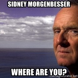 Colin McGinn - Sidney Morgenbesser Where are you?