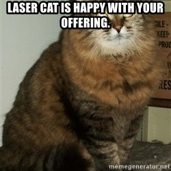 ZOE GREAVES DTES VANCOUVER - laser cat is happy with your offering.