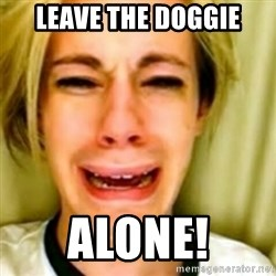 Leave Britney Alone 2 - leave the doggie alone!