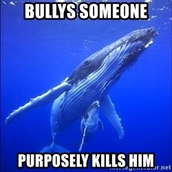super dumb humpback whale - bullys someone purposely kills him