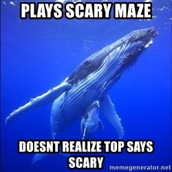 super dumb humpback whale - plays scary maze doesnt realize top says scary