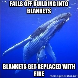 super dumb humpback whale - falls off building into blankets blankets get replaced with fire