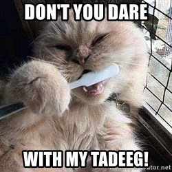 Pussy Brushes  - don't you dare with my tadeeg!