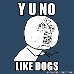 Y U No - Y U NO like dogs