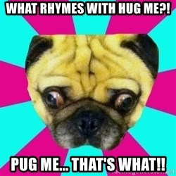 Perplexed Pug - WHAT RHYMES WITH HUG ME?! PUG ME... THAT'S WHAT!!
