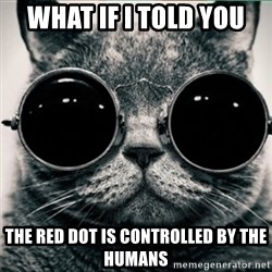 Morpheus Cat - what if i told you the red dot is controlled by the humans