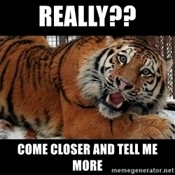 Sarcasm Tiger - really?? come closer and tell me more
